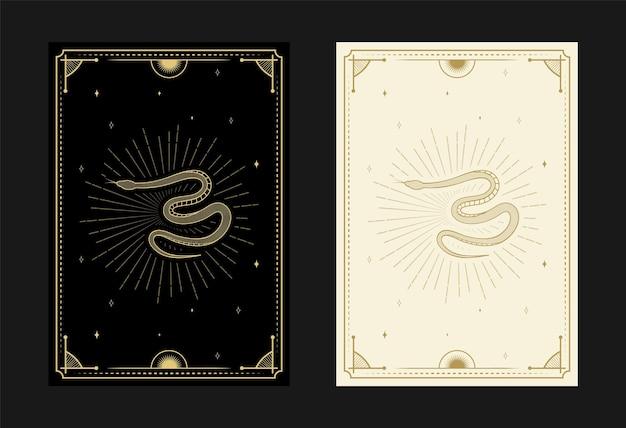 Set mystieke tarotkaarten alchemistische doodle symbolen gravure van sterren schedel slangen en kristallen