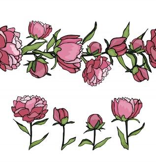 Set pioen elementen en patroonpenseel. hand getekend cartoon stijl illustratie. leuke zomer of lente sjablonen bruiloft, vakantie of kaart