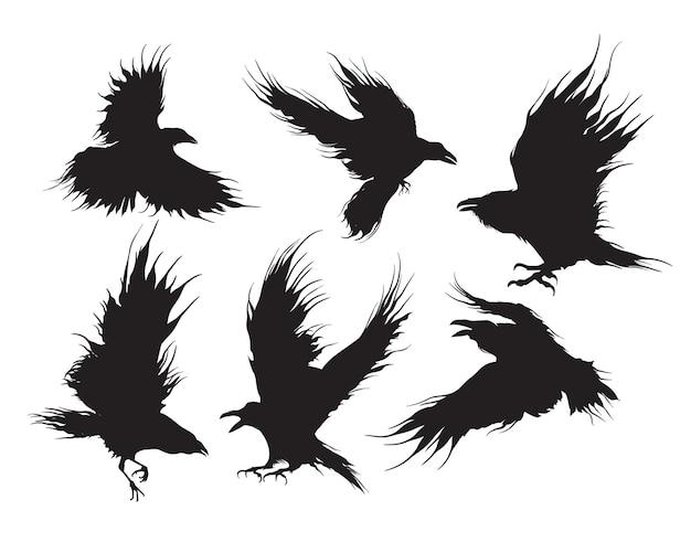 Set raven of zwarte kraaien vliegend silhouet