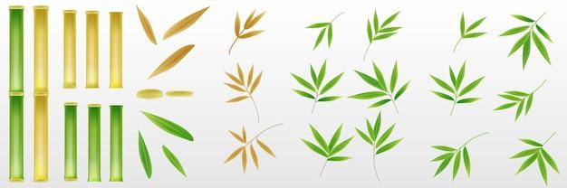 Set realistische 3d bamboe boomblad en stengel stick elementen decoratie vers groen en gedroogd bruin