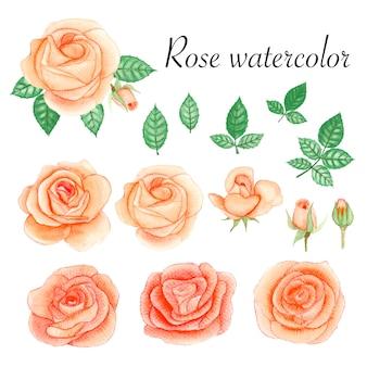 Set roze aquarel elementen.