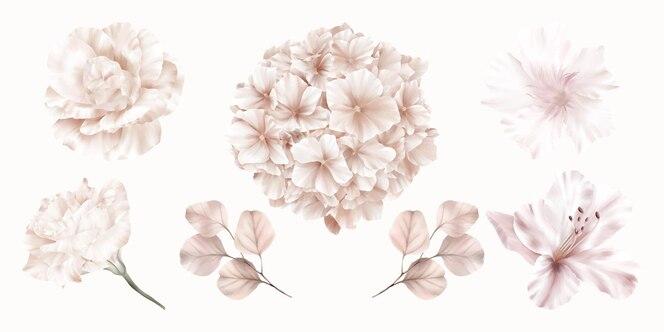 Set roze bloemen van hortensia, roos en lelie