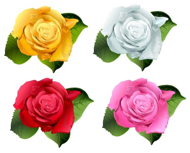 Set roze bloemknop