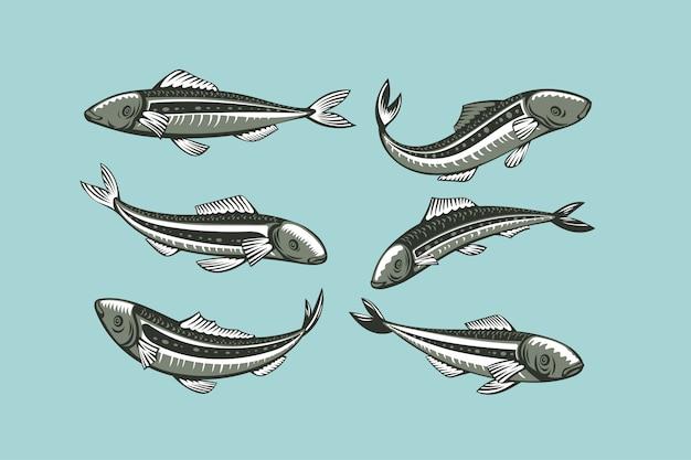Set sardine. vis illustratie