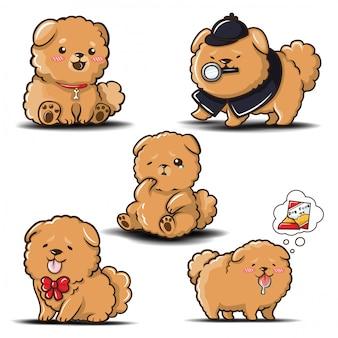 Set schattig chowchow hond cartoon.