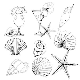 Set, schelpen, tropische cocktails. vector illustratie.
