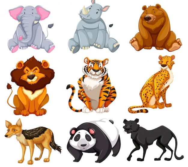Set tekenfilm dieren