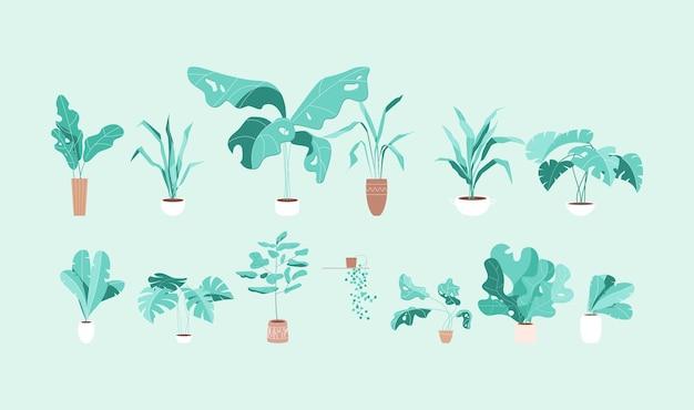 Set tropische kamerplanten in moderne stijl