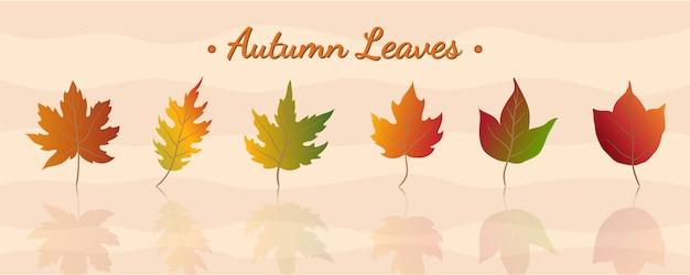 Set van 6 kleurrijke mix herfstbladeren element voor versieren illustraties in herfstseizoen