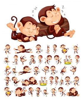 Set van aap karakter