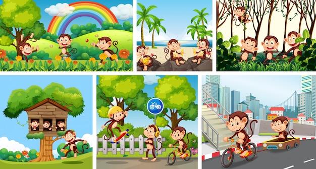 Set van aap op verschillende achtergrond
