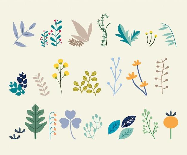 Set van abstracte bladeren