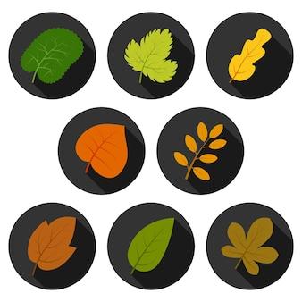 Set van acht herfstbladeren in cirkels met schaduwen. vector illustratie