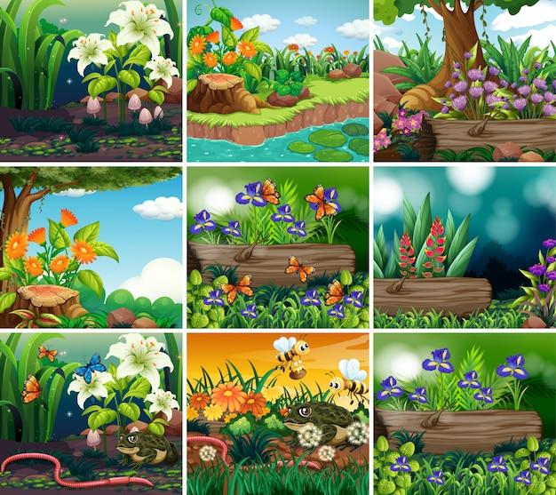 Set van achtergrond met natuur thema