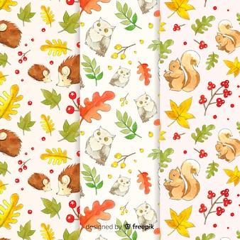 Set van aquarel herfst patronen