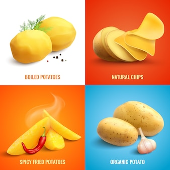 Set van biologische en gekookte aardappels, pittige gebakken aardappelen en natuurlijke chips