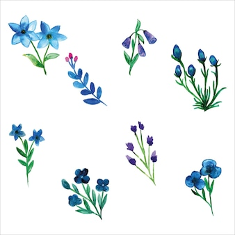 Set van blauwe wilde bloem aquarel van lente seizoen Premium Vector