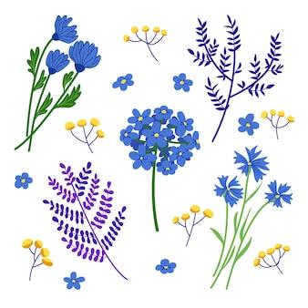 Set van blauwe wilde bloem en blad illustraties. platte vector decoratie-elementen geïsoleerd op wit.