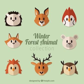 Set van bos dier aardig in plat design