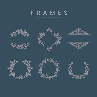 Set van botanische frame ontwerpelementen vector