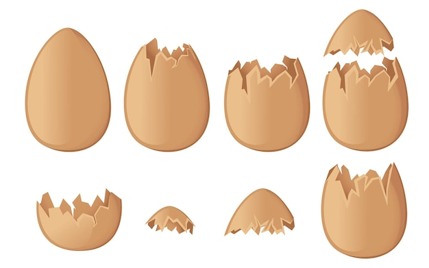 Set van bruine eierschalen hele en gebarsten of gebroken schelpen platte vectorillustratie geïsoleerd op een witte achtergrond