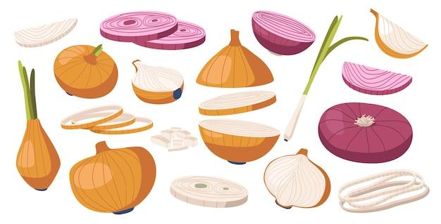 Set van bruine en paarse uien, groente, natuurlijke tuinplant, groenten cultuur. gezonde voeding, ecologische landbouwproductie