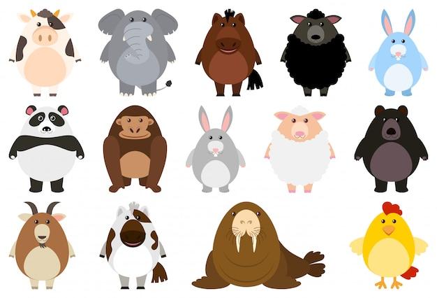 Set van cartoon dieren