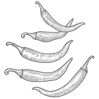 Set van chili peper illustraties op witte achtergrond