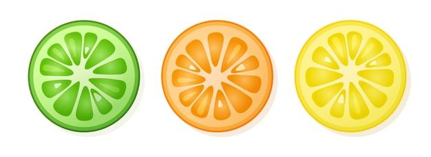Set van citroen, sinaasappel, limoen plakjes op witte achtergrond. citrusvruchtenplakken. illustratie.