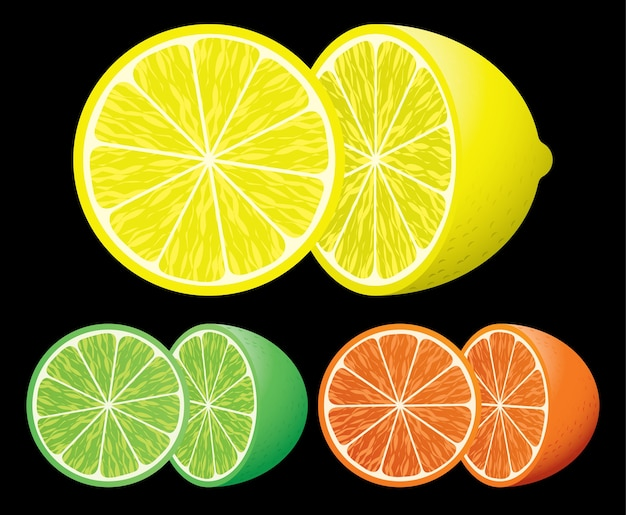 Set van citrusvruchten