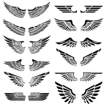 Set van de vleugels op witte achtergrond. elementen voor logo, label, embleem, teken, badge. illustratie