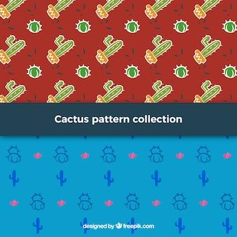 Set van decoratieve cactus patronen