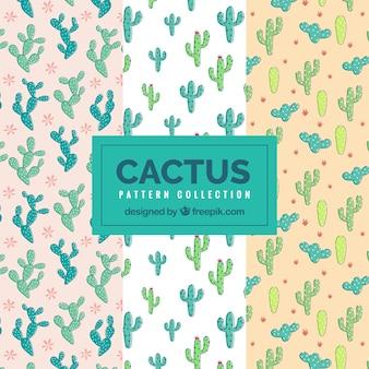 Set van decoratieve handgetekende cactuspatronen