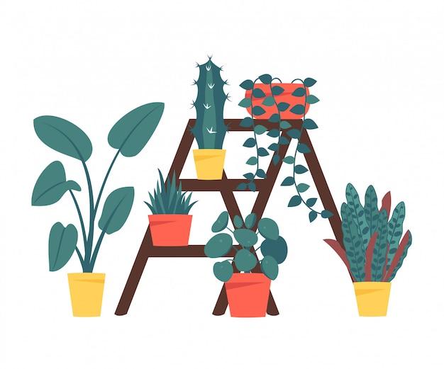 Set van decoratieve kamerplanten geïsoleerd op een witte achtergrond