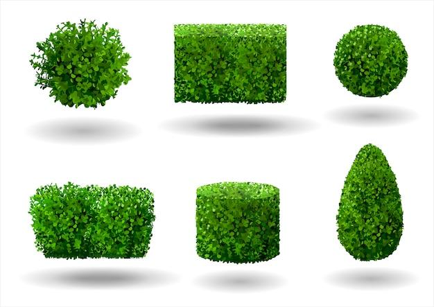 Set van decoratieve planten