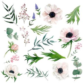Set van delicate aquarel anemonen, bladeren, bessen en andere botanische producten