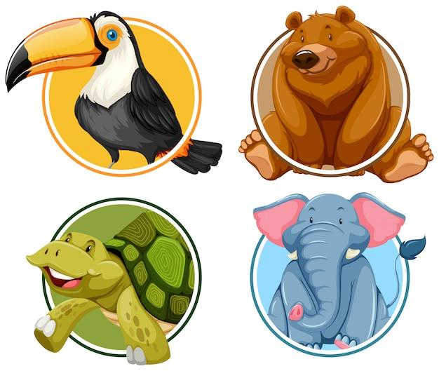 Set van dieren banner