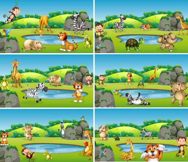 Set van dieren in het wild