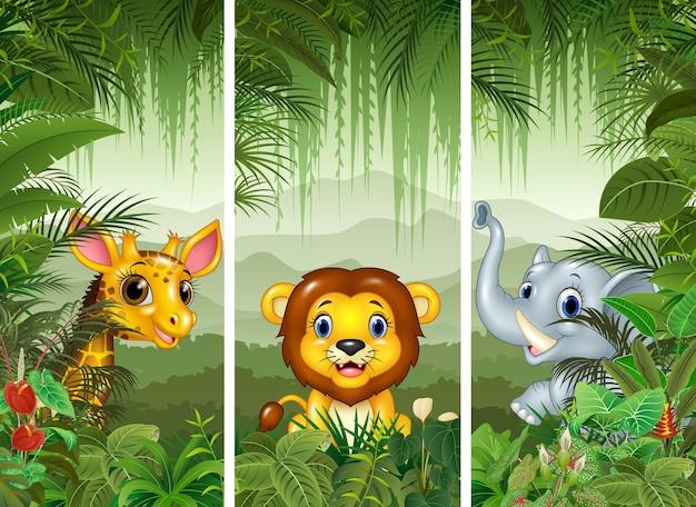 Set van drie afrikaanse dieren met tropische bos achtergrond