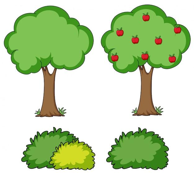Set van eenvoudige boom