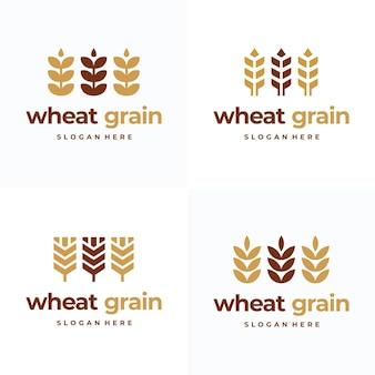 Set van eenvoudige graan tarwe logo concept, landbouw tarwe logo sjabloon vector icon