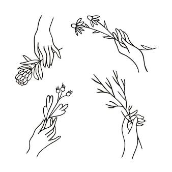 Set van eenvoudige handen met bloemen en takken getekend door lijn.