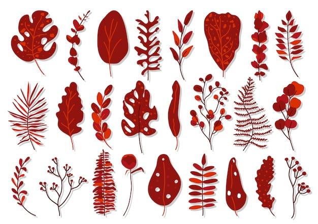 Set van exotisch rood tropisch blad. hand getekend verschillende abstracte jungle bloemen botanische element verlaat palm, monstera voor decoratieve compositie of uitnodigingskaart geïsoleerd op wit