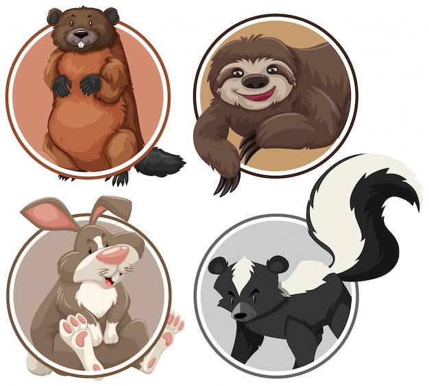 Set van exotische dieren op cirkel sjabloon