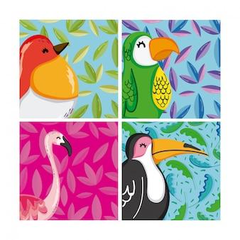 Set van exotische vogels