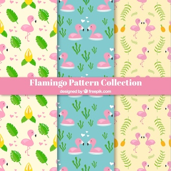 Set van flamingo patronen met planten