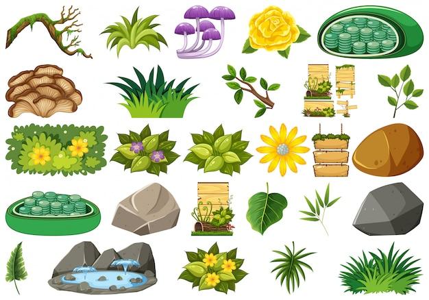 Set van geïsoleerde objecten thema - natuur