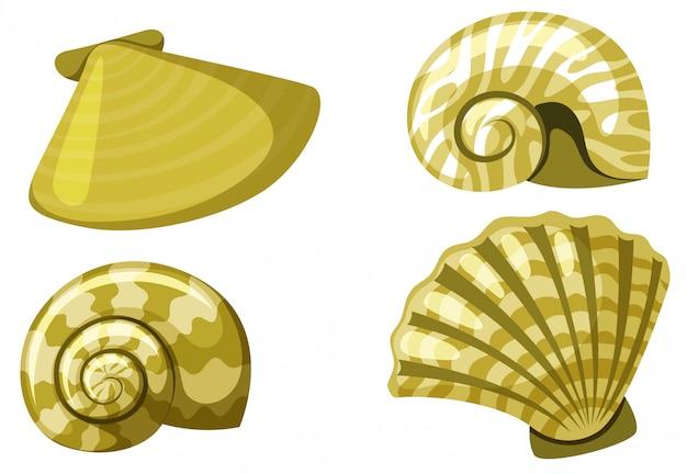 Set van geïsoleerde set van schelpen in gele kleur