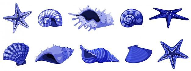 Set van geïsoleerde zeeschelpen in blauwe kleur