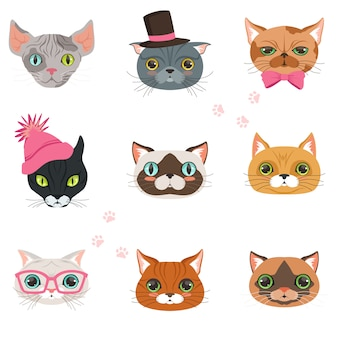 Set van grappige katten hoofden van verschillende rassen